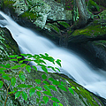 Falls Of Plymouth by JG Coleman