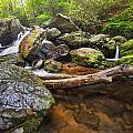 Falls On Blood Mountain Creek by Alex Mironyuk