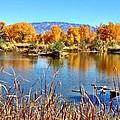 Fall's Reflection On The Rio Grande by Vanessa Ortiz