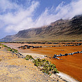 Famara Cliffs And Salinas Del Rio On Lanzarote by Karol Kozlowski