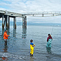 Family Surf Fishing In Kachemak Bay Off Homer Spit-ak by Ruth Hager