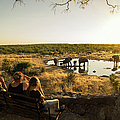 Family Watching Elephants by Buena Vista Images