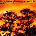Fan Into Flame by Richard Havenga
