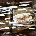 Fancy Goose by Debra Forand