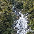Fantail Falls by Bob Phillips