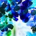 Fantasy Florals by Denise Tomasura