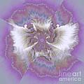Fantasy Flower  by Elizabeth McTaggart