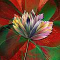 Fantasy Flower by Klara Acel