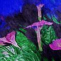 Fantasy Flowers Watercolor 2 Hp by David Lange