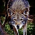 Fantasy Red Wolf by Steve McKinzie