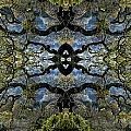 Fantasy Tree by William Durfey