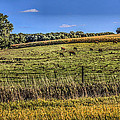 Farm Field by Ray Congrove
