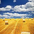 Farm Field With Hay Bales In Saskatchewan by Elena Elisseeva