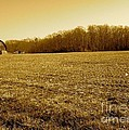 Farm Field With Old Barn In Sepia by Chris W Photography AKA Christian Wilson