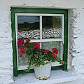 Farm House Window by Joe Cashin