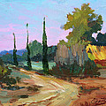Farm In Provence by Diane McClary