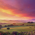 Farm In Tuscany At Dawn by Mammuth
