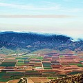 Farm Land by Marianne Jimenez