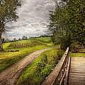 Farm - Landscape - Jersey Crops by Mike Savad