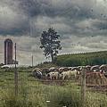 Farm Landscape by Kathy Jennings