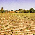 Farm Landscape by Pati Photography