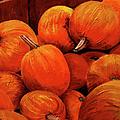 Farm Market Pumpkins by Phyllis London