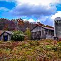 Farm by Michael Brooks