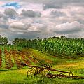 Farm - Organic Farming by Mike Savad