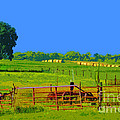 Farm Photo Digital Paint Style by Minding My  Visions by Adri and Ray