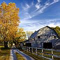 Farm Road by Diana Powell