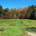 Farm Road In Autumn by Christian Mattison