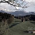 Farm Scene In Switzerland 2 by Susanne Van Hulst