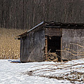 Farm Shed by Jay Ressler