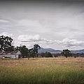 Farm Silouette by Bobbee Rickard