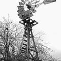 Farm Windmill - Black And White by Carol Groenen