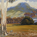 Farm With Large Gum Tree by Pamela  Meredith