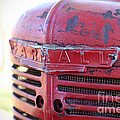 Farmall by Todd Blanchard