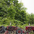 Farmall Tractors All In A Row by Kathy Clark