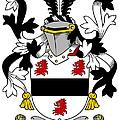 Farmer Coat Of Arms Irish by Heraldry