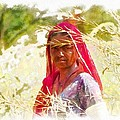 Farmers Fields Harvest India Rajasthan 8 by Sue Jacobi
