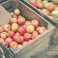Farmers' Market Apples by Bethany Helzer