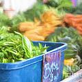 Farmer's Market Basil by Michele Steffey