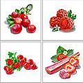 Farmers Market Gifts Red Vitamins by Irina Sztukowski