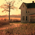Farmhouse By Tree by Jill Battaglia