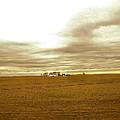 Farmhouse Island by Susan Wyman