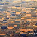 Farming In The Sky 2 by Anthony Wilkening