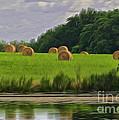 Farming Reflection by Brian Mollenkopf