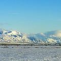 Farmland Winter View by Woody Wilson