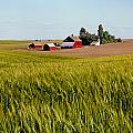 Farmlands Near Davenport by Ed  Cooper Photography