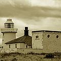 Farne Lighthouse by Dennis Dame